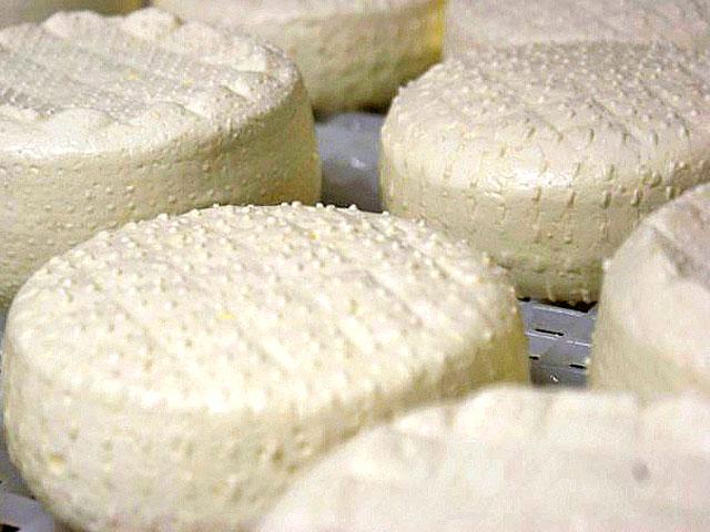formaggiook